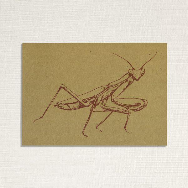 duurzame kaart met bidsprinkhaan insect op een geelachtige achtergrond