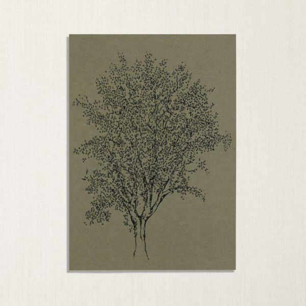 duurzame kaart met es boom op groene achtergrond