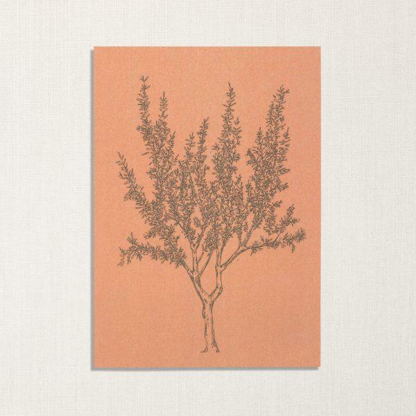 duurzame kaart met amandelboom op roze achtergrond