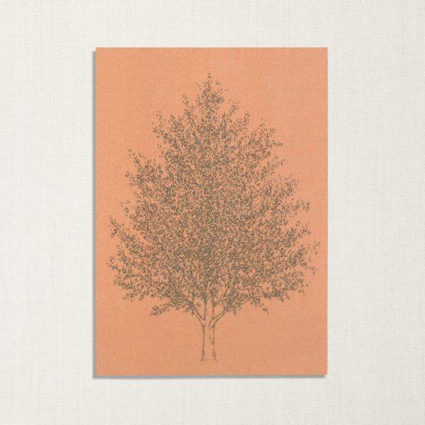 duurzame kaart met amberboom op roze achtergrond