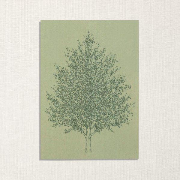 duurzame kaart met amberboom op lichtgroene achtergrond