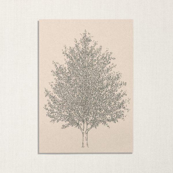 duurzame kaart met amberboom op lichte achtergrond