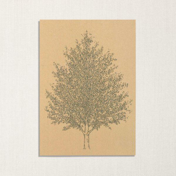 duurzame kaart met amberboom op geelachtige achtergrond