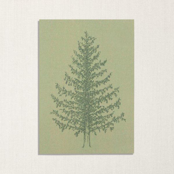 duurzame kaart met dennenboom op groenachtige achtergrond