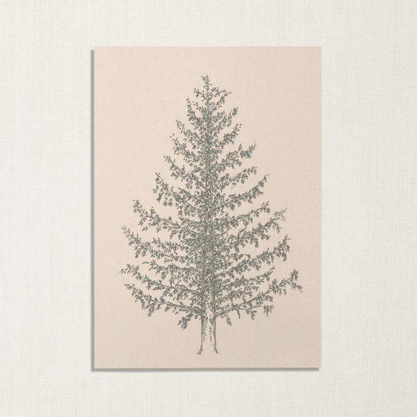 duurzame kaart met dennenboom op lichte achtergrond