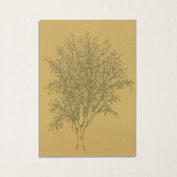 duurzame kaart met es boom op donker geelachtige achtergrond