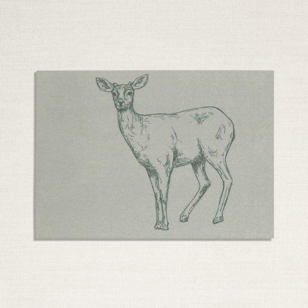 duurzame kaart met een hertje op blauwe achtergrond