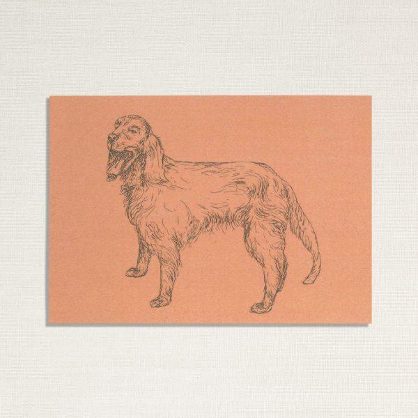 duurzame kaart met hond Zeus op roze achtergrond