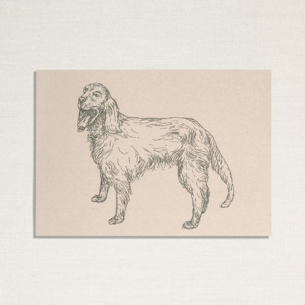 duurzame kaart met hond Zeus op lichte achtergrond