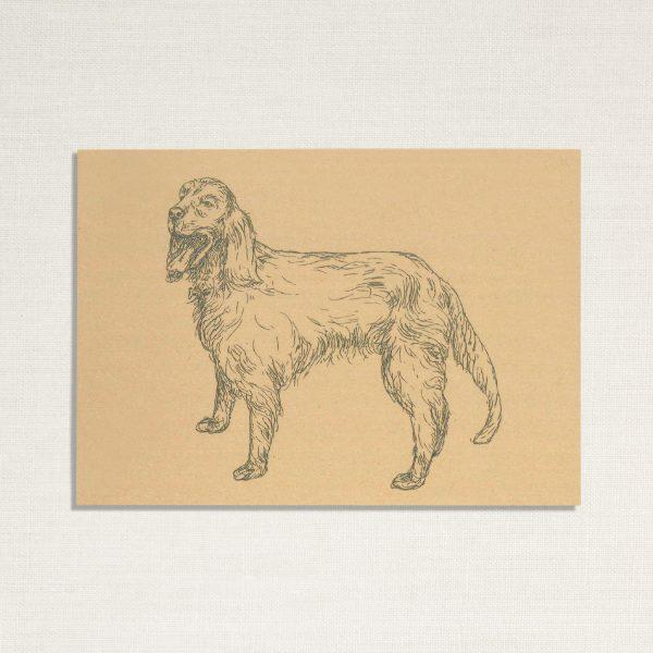 duurzame kaart met hond Zeus op geelachtige achtergrond