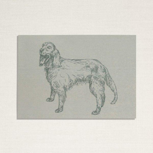duurzame kaart met hond Zeus op blauwe achtergrond