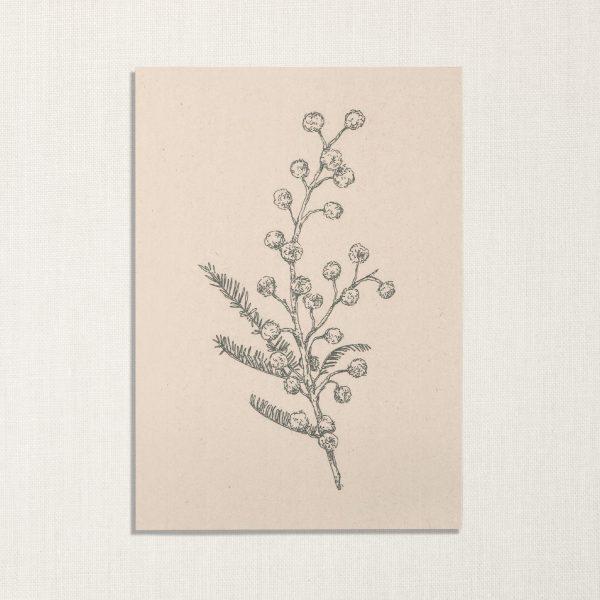 duurzame kaart met mimosa bloem op lichte achtergrond