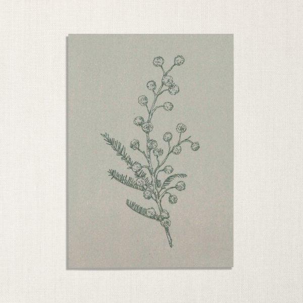 duurzame kaart met mimosa bloem op lichtblauwe achtergrond