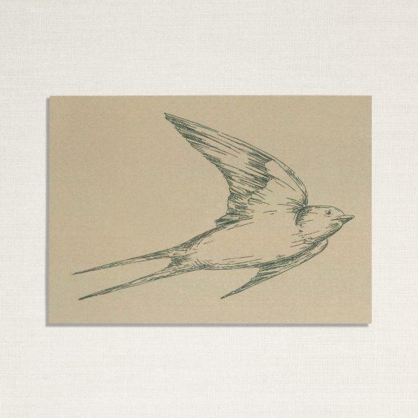 duurzame kaart met een zwaluw vogel op lichtgroene achtergrond