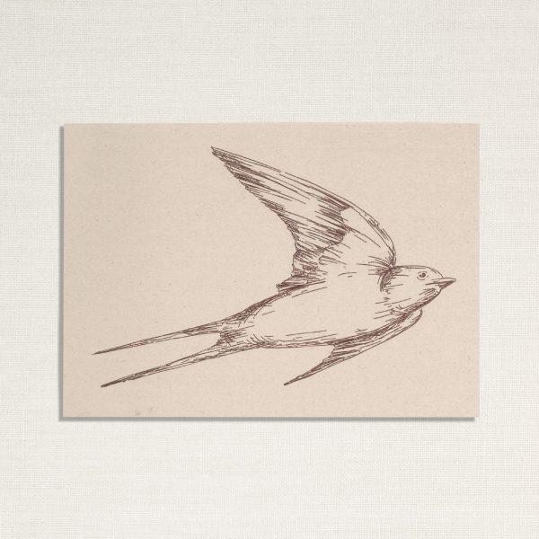 duurzame kaart met een zwaluw vogel op lichte achtergrond