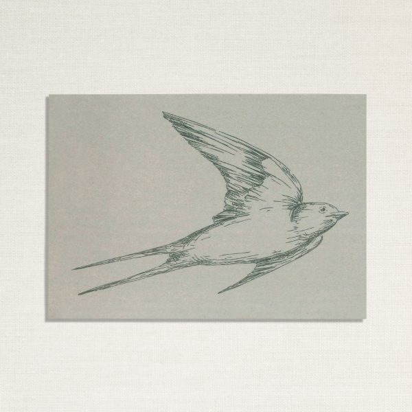 duurzame kaart met een zwaluw vogel op blauwe achtergrond